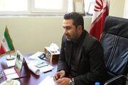 اشکان نجف پور: قشقایی با تمام قدرت جلوی شاهین بازی می کند